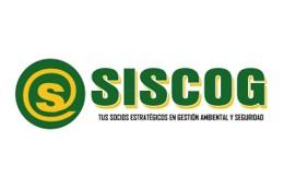 GRUPO SISCOG S.A.C.